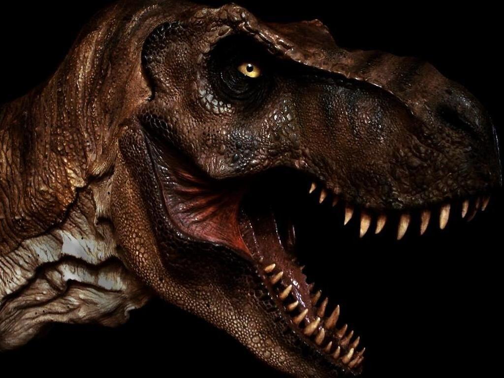 Radiometrische dating dinosaurussen Oekraïens Dating Canada