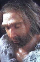 neanderthaler zag er als een robuuste mens uit