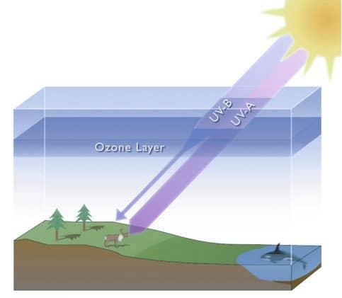 ozonlaag bescherm ons tegen straling en bestaat uit zuurstof