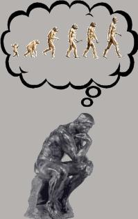 evolutietheorie behoort thuis in de filosofie