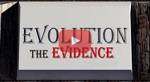Evolution: The Evidence